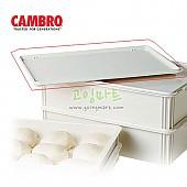 [캠브로] 피자도우박스 커버 DBC1826P